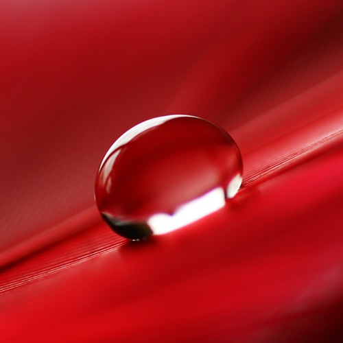 red_drop_by_girlmarvel