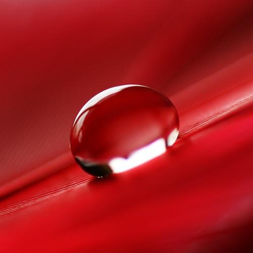 red_drop_by_girlmarvel