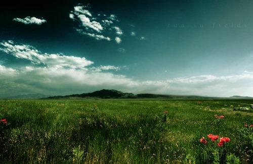 run_in_fields_by_gabrielsalazar