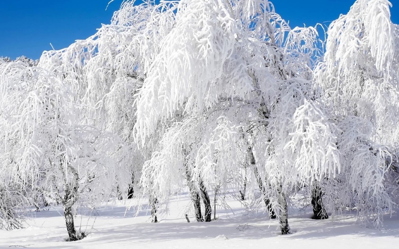 картинка зима метельная
